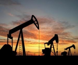 Petroleo terrestre