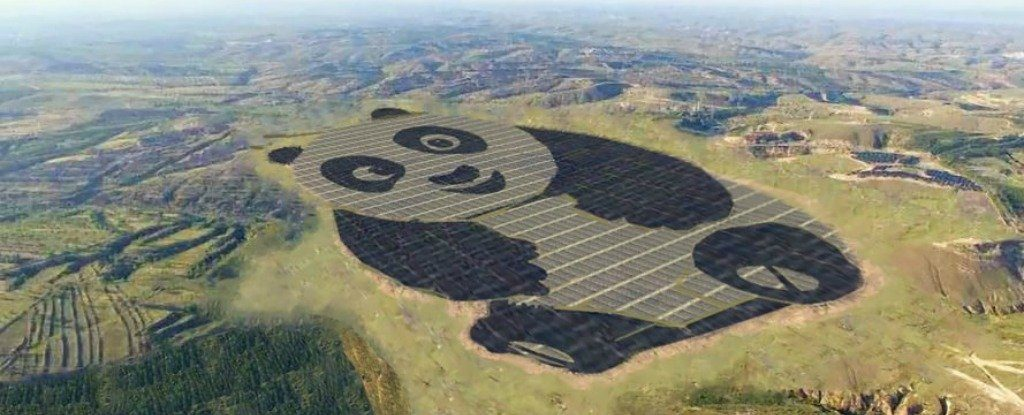 panda-solarplant_1024